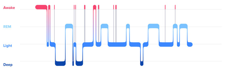 กราฟแสดงแพทเทิลการนอนหลับ